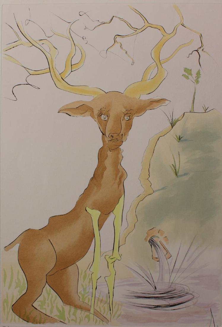 Salvador Dali- Original Engravings with Color by - 2