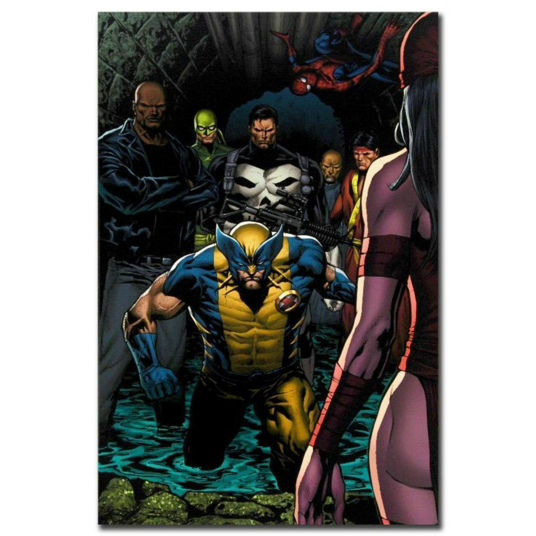 """Marvel Comics """"Shadowland #4"""" Numbered Limited Edition"""