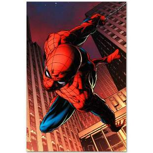 "Marvel Comics ""Amazing Spider-Man #641"" Numbered"