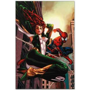 """Marvel Comics """"Amazing Spider-Man Family #6"""" Numbered"""