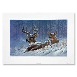 """Larry Fanning, """"Bedded Down (Whitetail Deer)"""" Hand"""