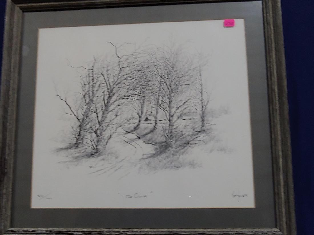 Framed art pencil drawing
