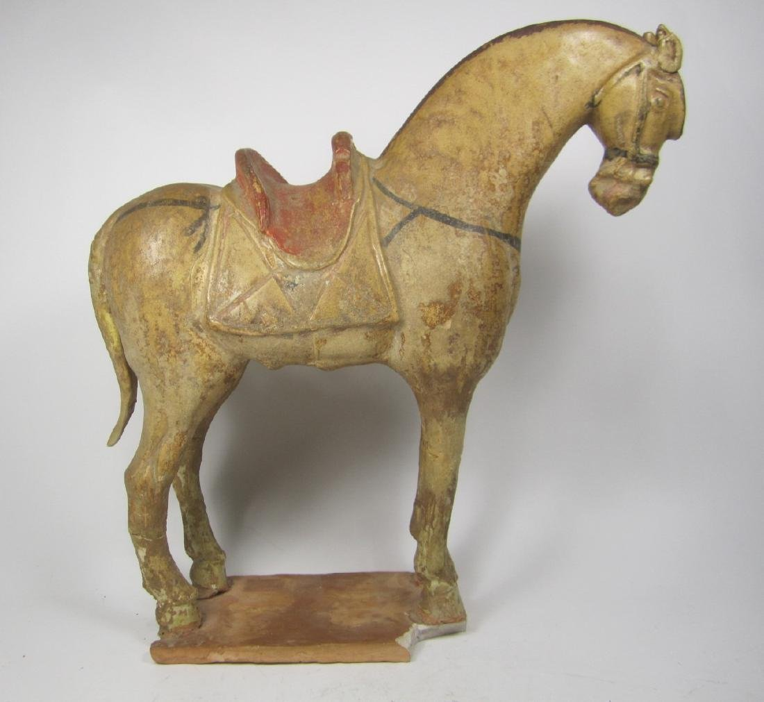 TANG SAN-CAI HORSE