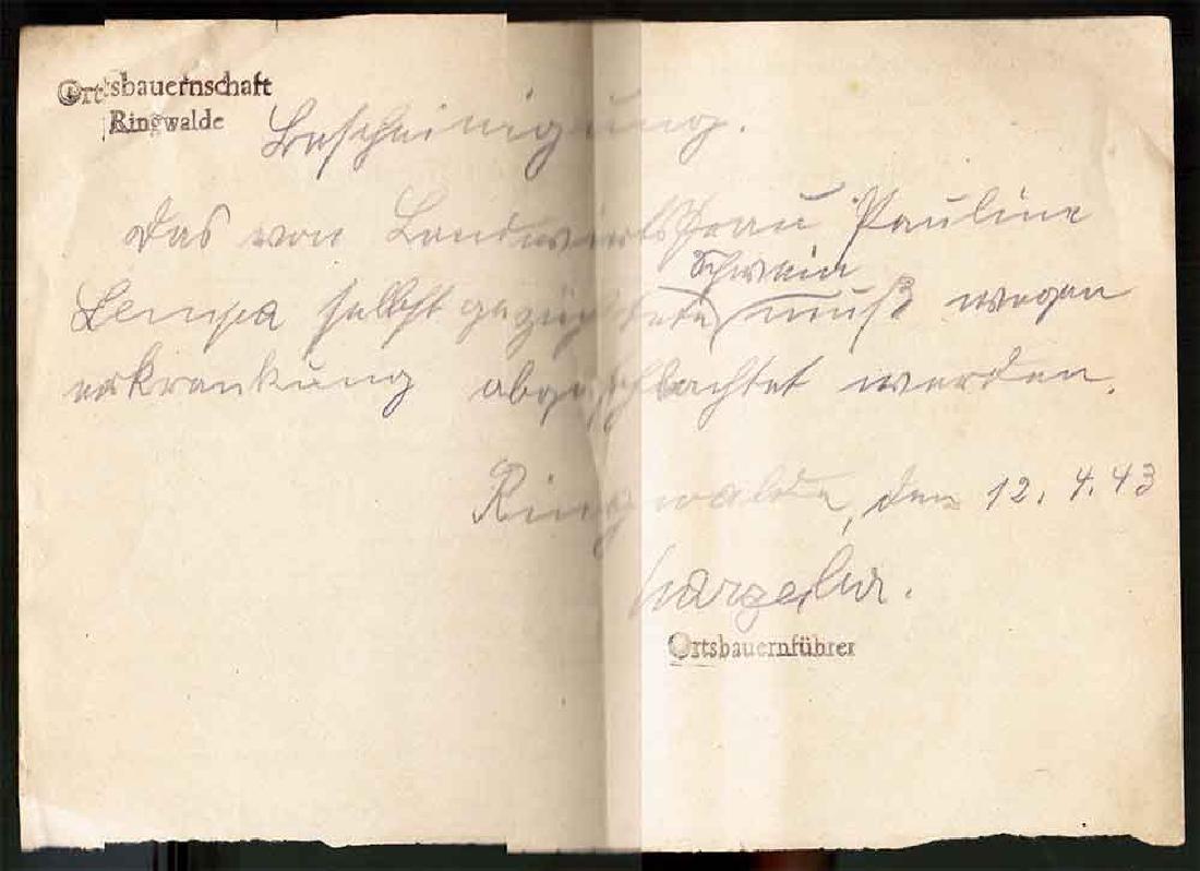 German WW2 NAZI Unusual Document, 1943