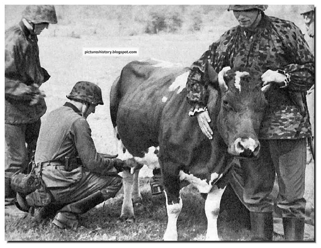 German WW2 Photo Frame w. Iron Cross and date, 1942 - 10
