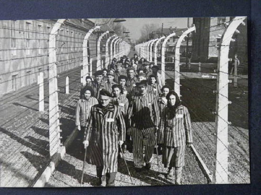 German WW2 Plate MAJDANEK w. Wire Barb, 1941-1944 - 10