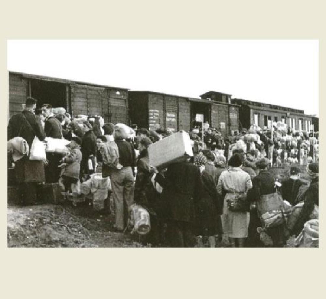 Extremely Rare Polish WW2 Document Evacuation, 1945 - 9