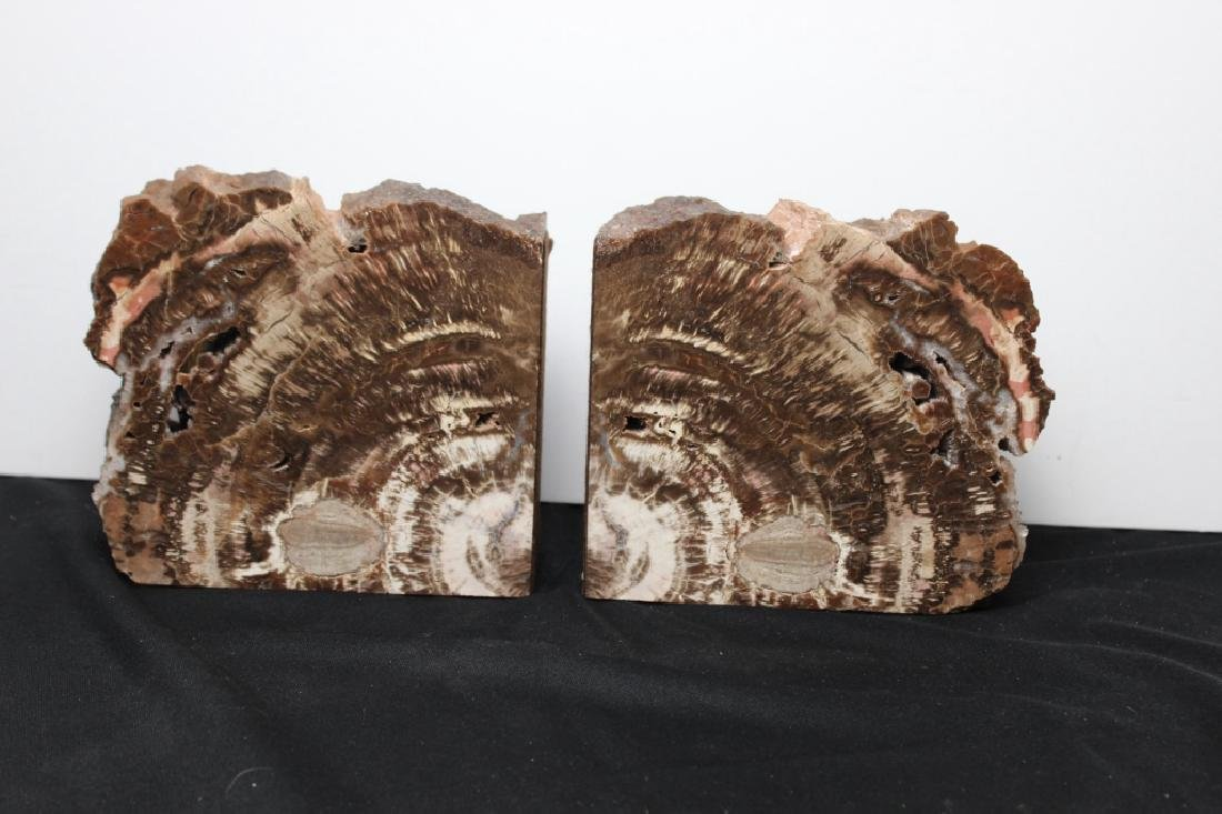 Arizona Petrified Wood - Pair of Bookends