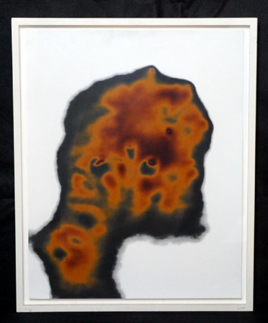 Adam Fuss (b.1961) Photogram