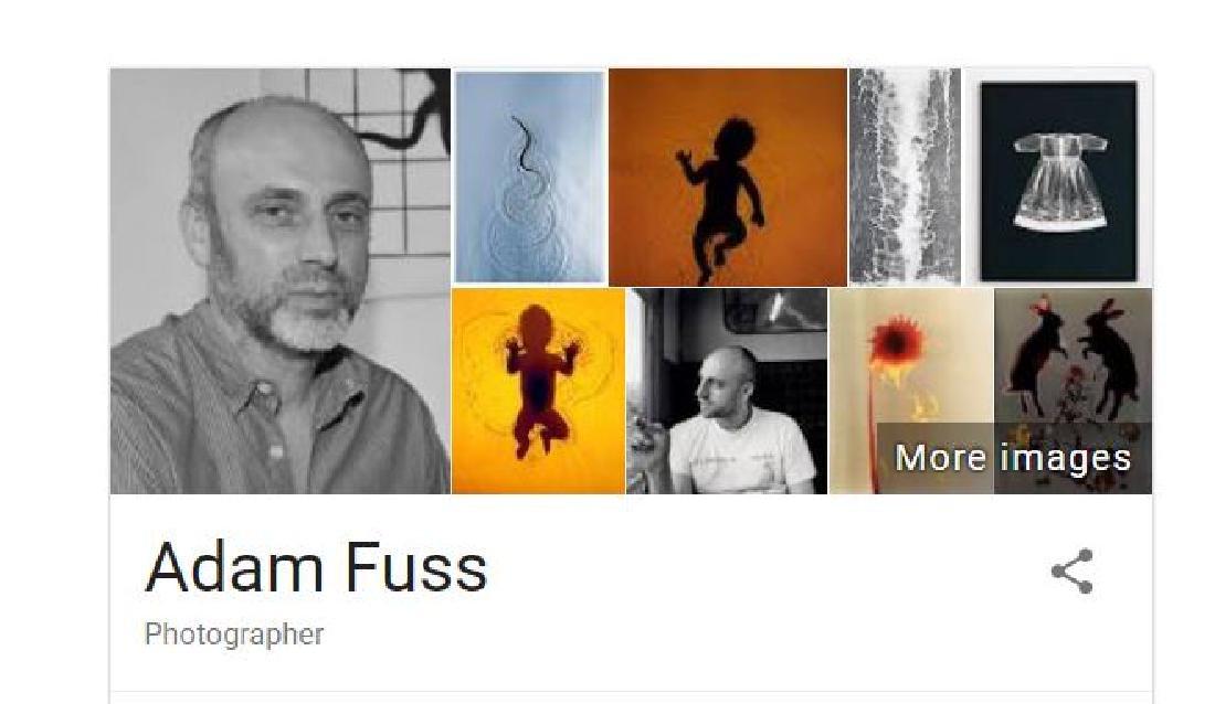 Adam Fuss (b.1961) Photogram - 4
