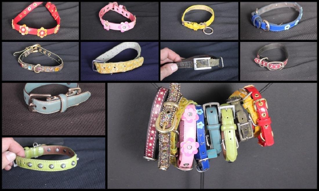 10 Fancy Dog Collars