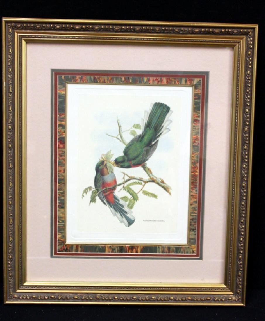 Print Antique Bird