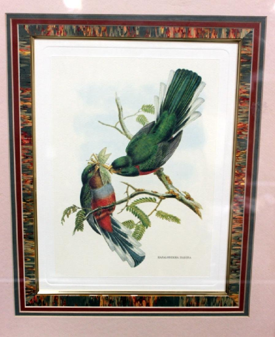 Print Antique Bird - 2