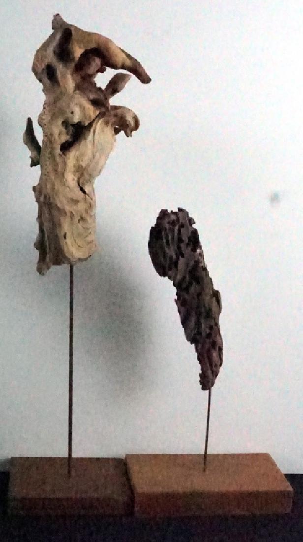 Bryan Hunt Drift Wood Sculpture (b.1947) (2 Pcs.) - 3