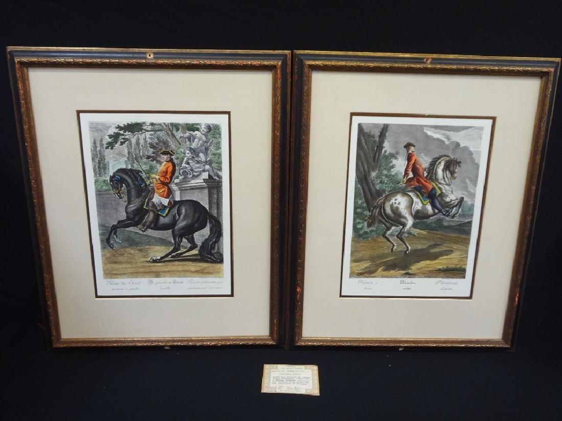 Lippizan Horses Pair Engravings Johann Elias Ridinger