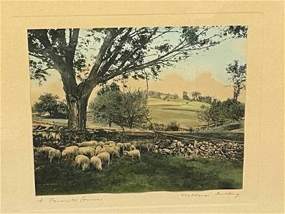 """Large Wallace Nutting Framed Hand Colored Photograph """"A"""