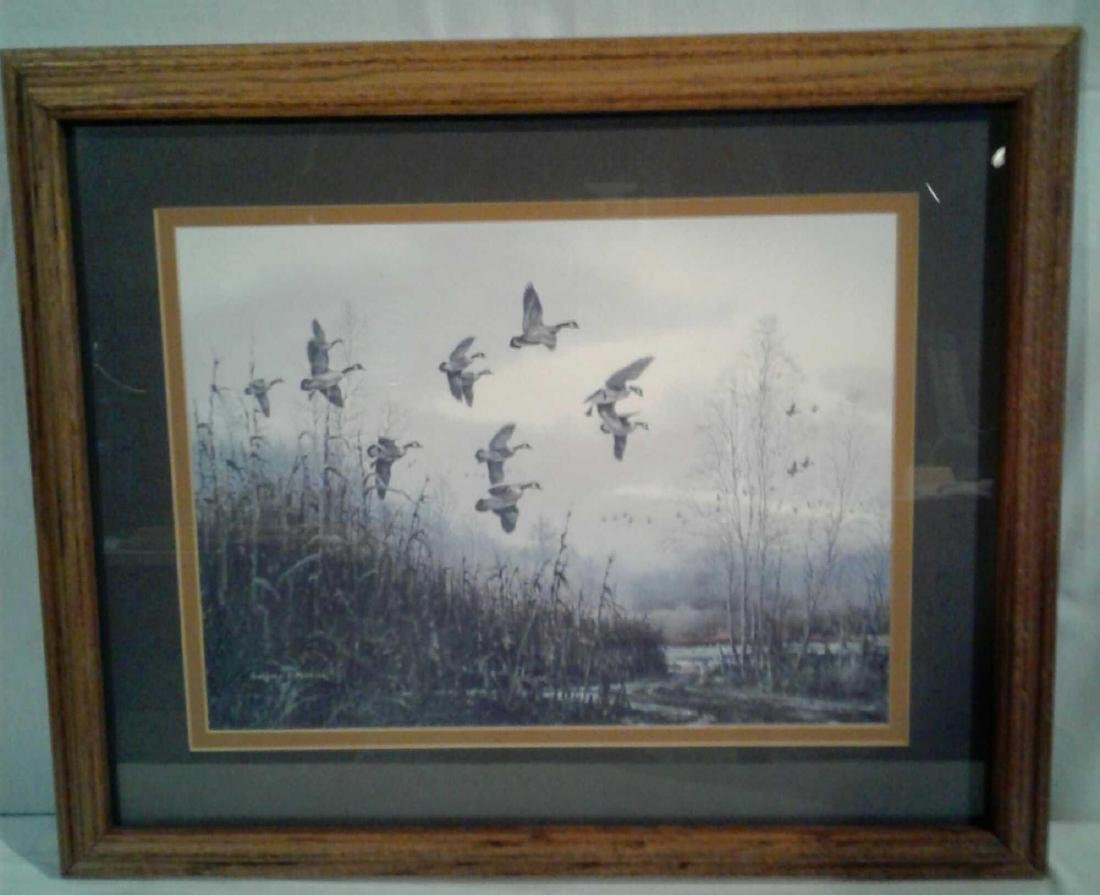 Gregory F Messier Print, Blue Wing Ducks in Flight - 6