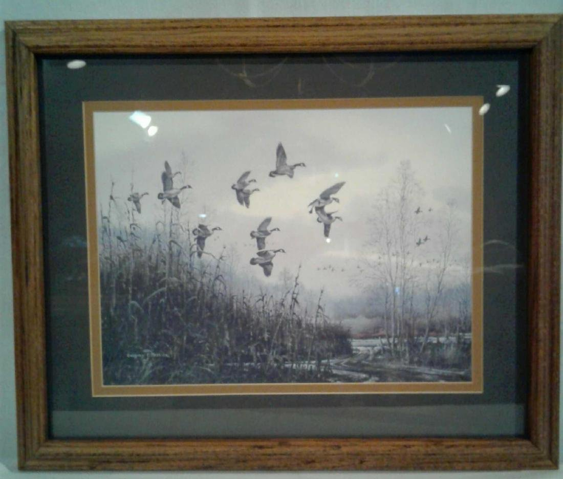 Gregory F Messier Print, Blue Wing Ducks in Flight - 8