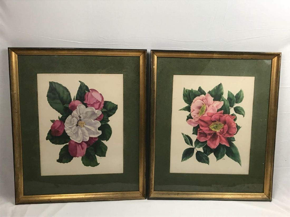 2 Framed Prints Cammilias by Eula - 10
