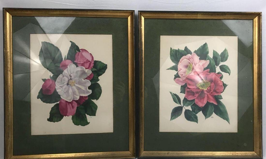 2 Framed Prints Cammilias by Eula