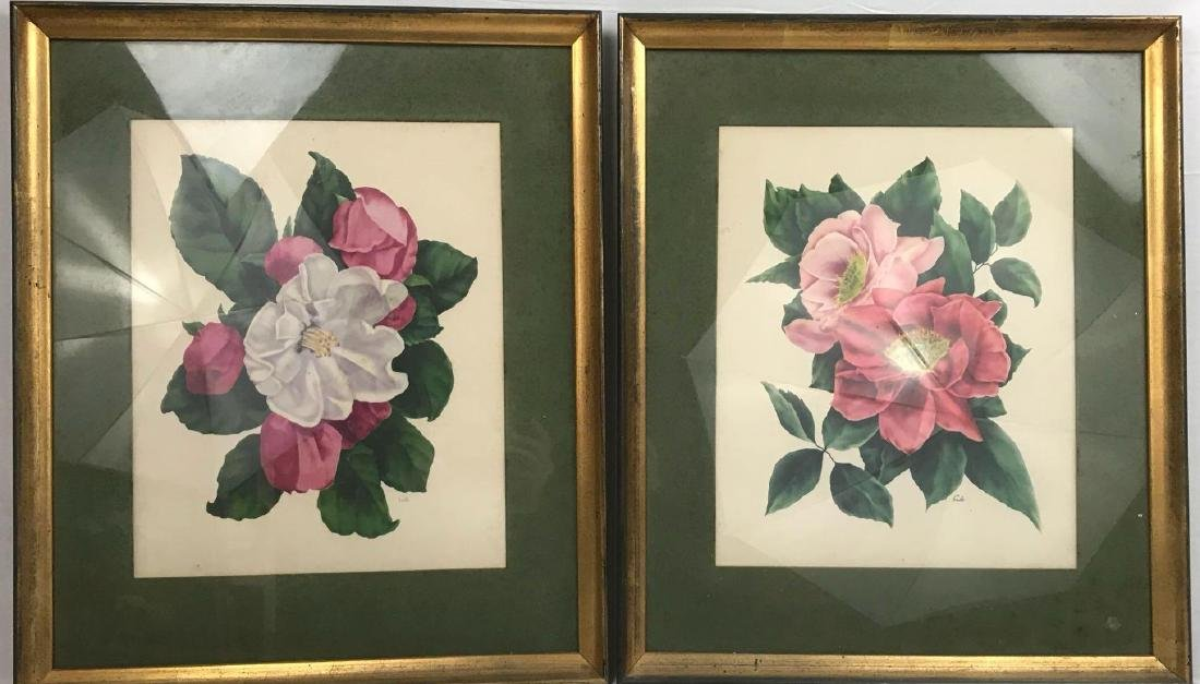 2 Framed Prints Cammilias by Eula - 3