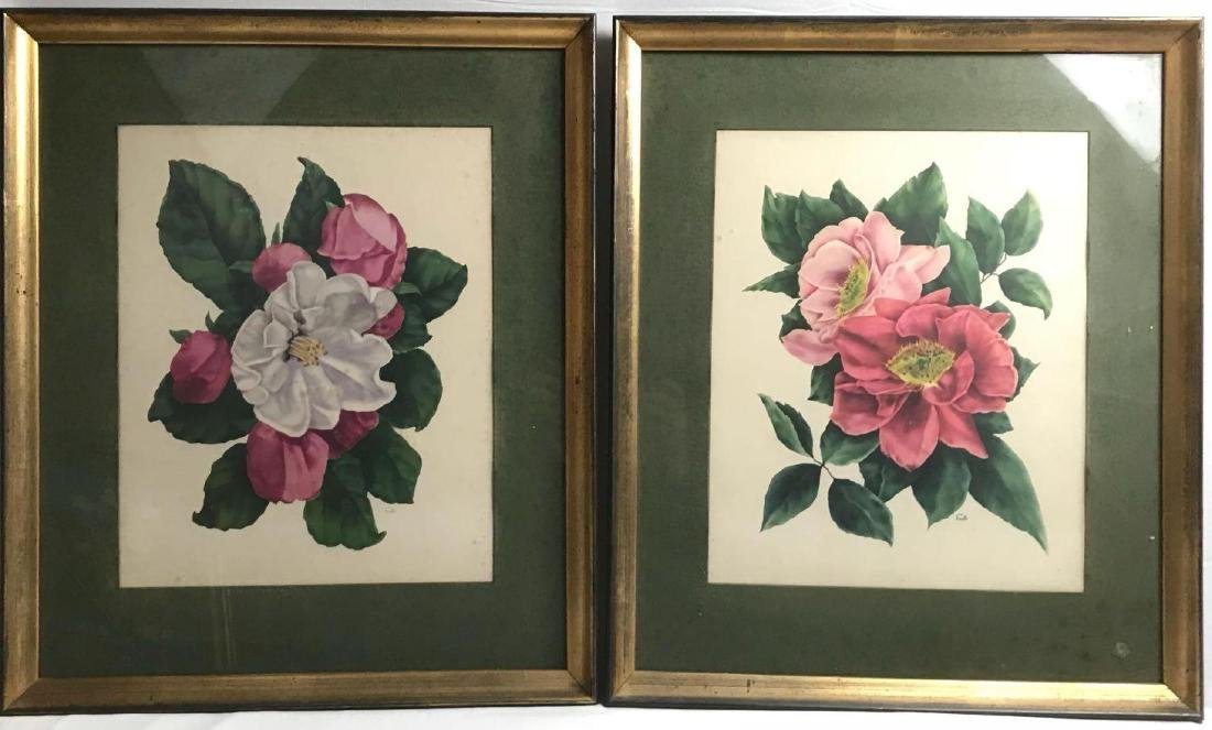 2 Framed Prints Cammilias by Eula - 8