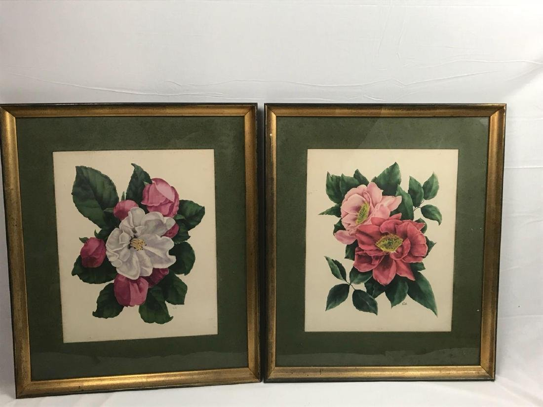 2 Framed Prints Cammilias by Eula - 9