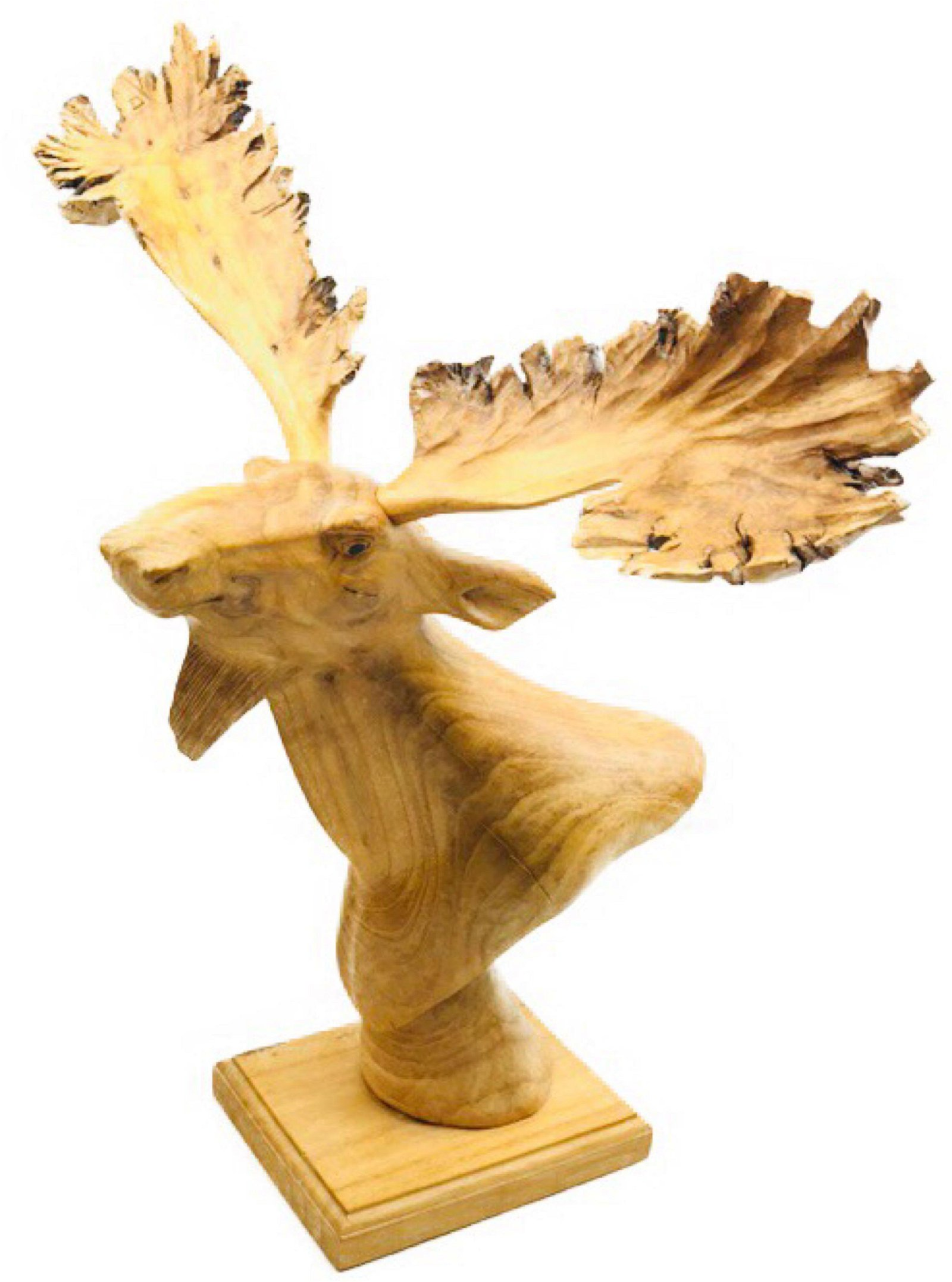 Hand-carved China-berry Burl Wood Moose, From Indonesia