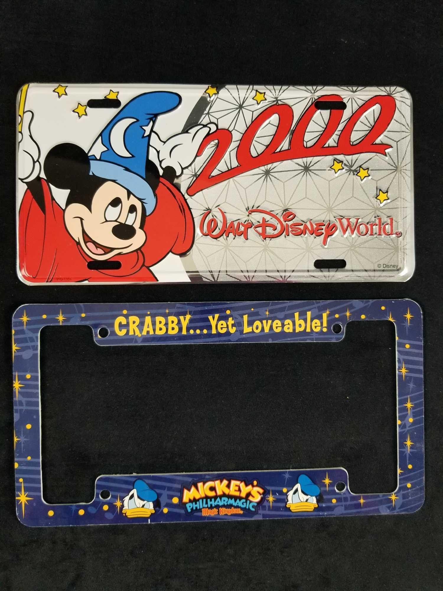 Lot of 2 Walt Disney World License