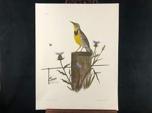 """Vintage Sighed Wildlife Artist Charles T Crume """"Eastern"""