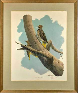 Framed Vintage Richard Sloan Yellow Shafted Flicker
