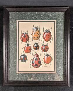 Ladybugs by Karl Karalus