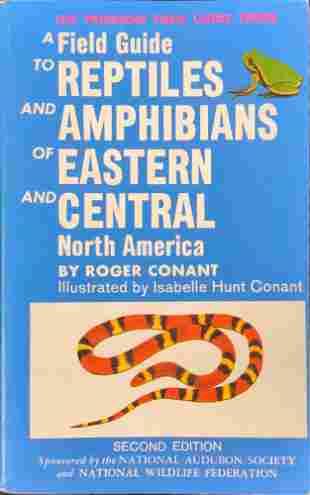 Field Guide Reptiles Amphibians of North America