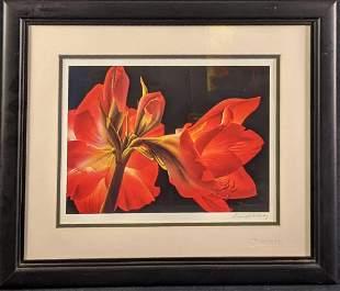 Framed Ann Salisbury Flower Print