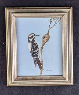 Downey Woodpecker by Karl Karalus