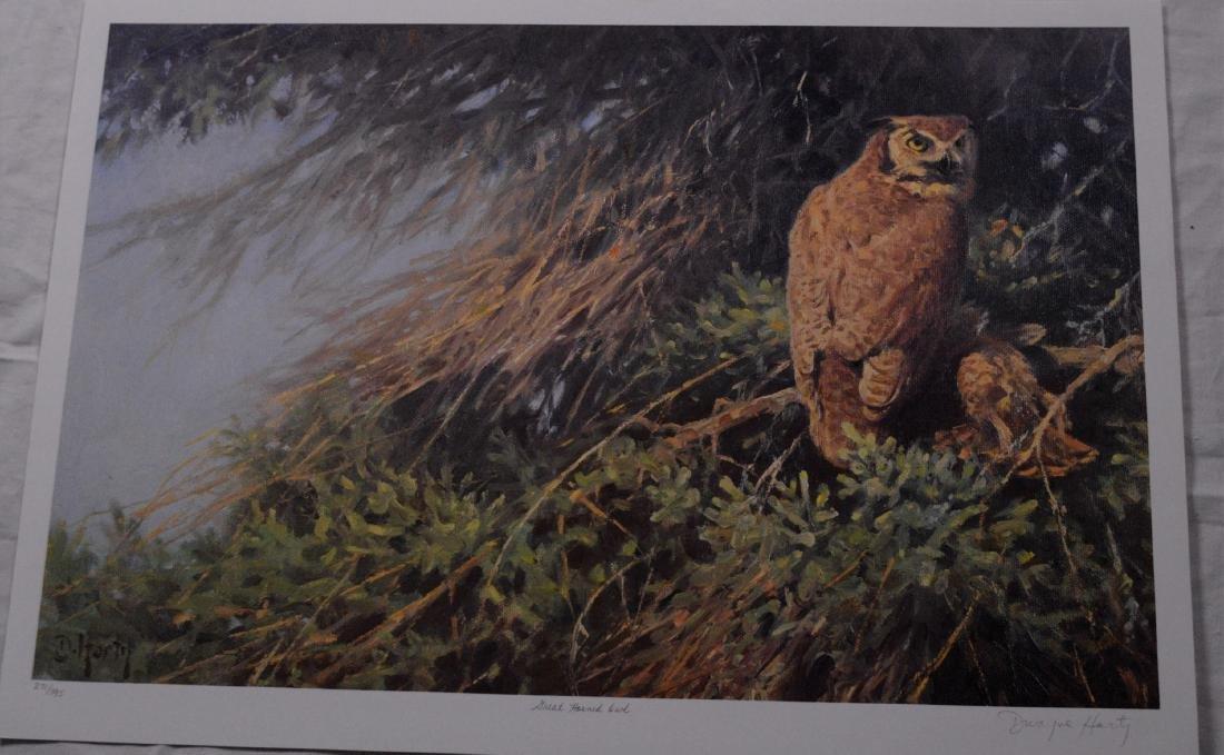 Harty, Dwayne (1957-) - Great Horned Owl