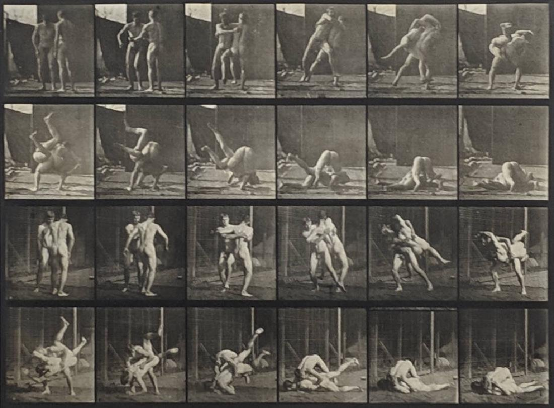 Eadweard Muybridge - Animal Locomotion: Plate 348