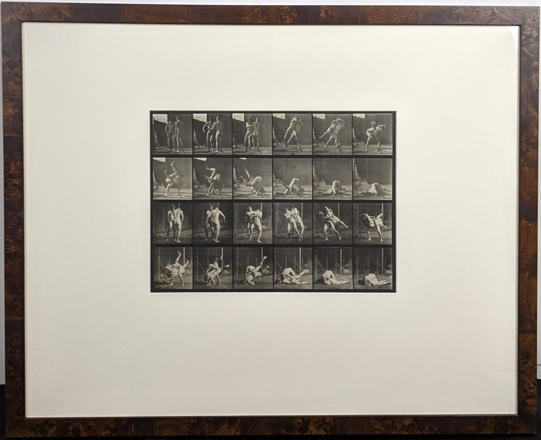 Eadweard Muybridge - Animal Locomotion: Plate 348 - 3
