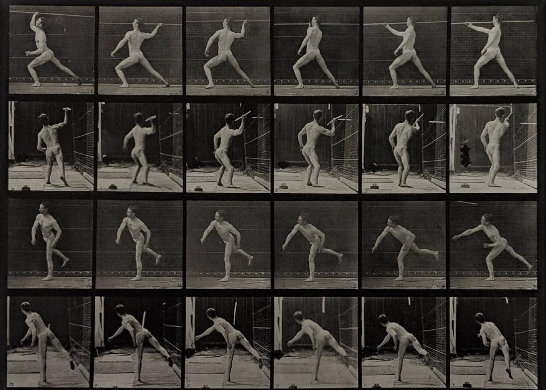 Eadweard Muybridge - Animal Locomotion: plate 360