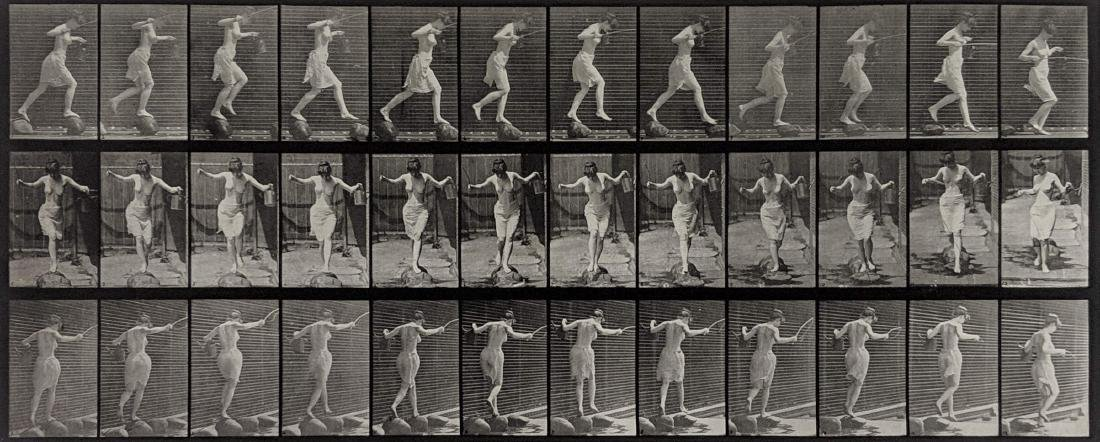 Eadweard Muybridge - Animal Locomotion: Plate 175