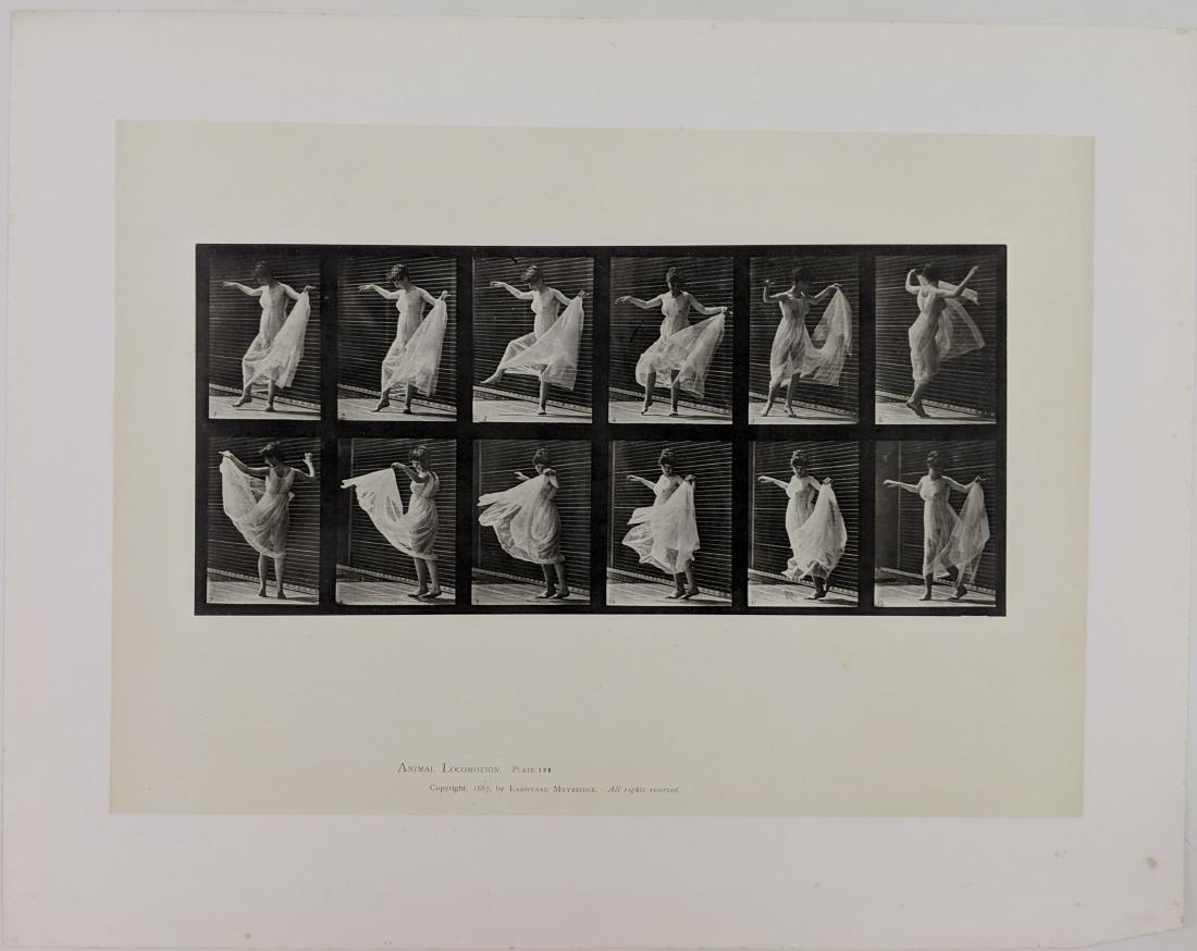 Eadweard Muybridge - Animal Locomotion: plate 189 - 2