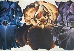 Lowell Nesbitt - Iris sequence