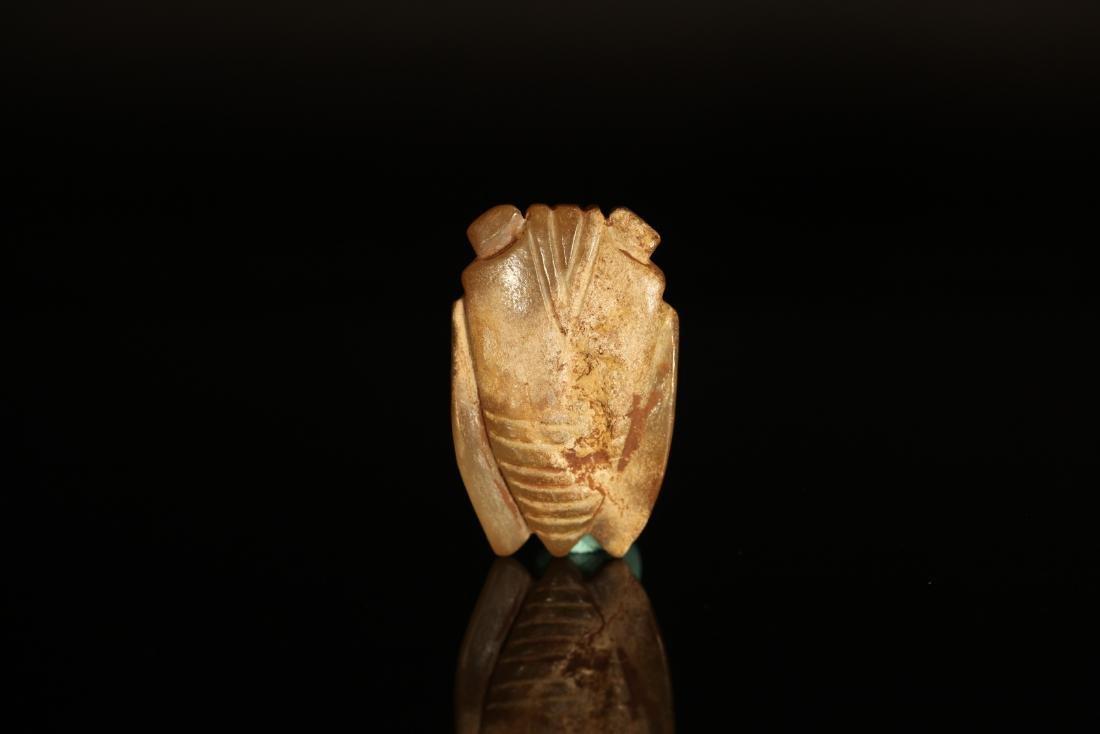 Han Dynasty - Green Sapphire Jade Cicada - 3