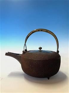 Unusual Japanese Iron Testubin Lidded Pot