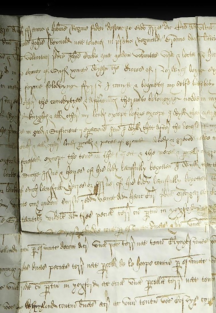 16th C. Handwritten English Court Document On Vellum - 4