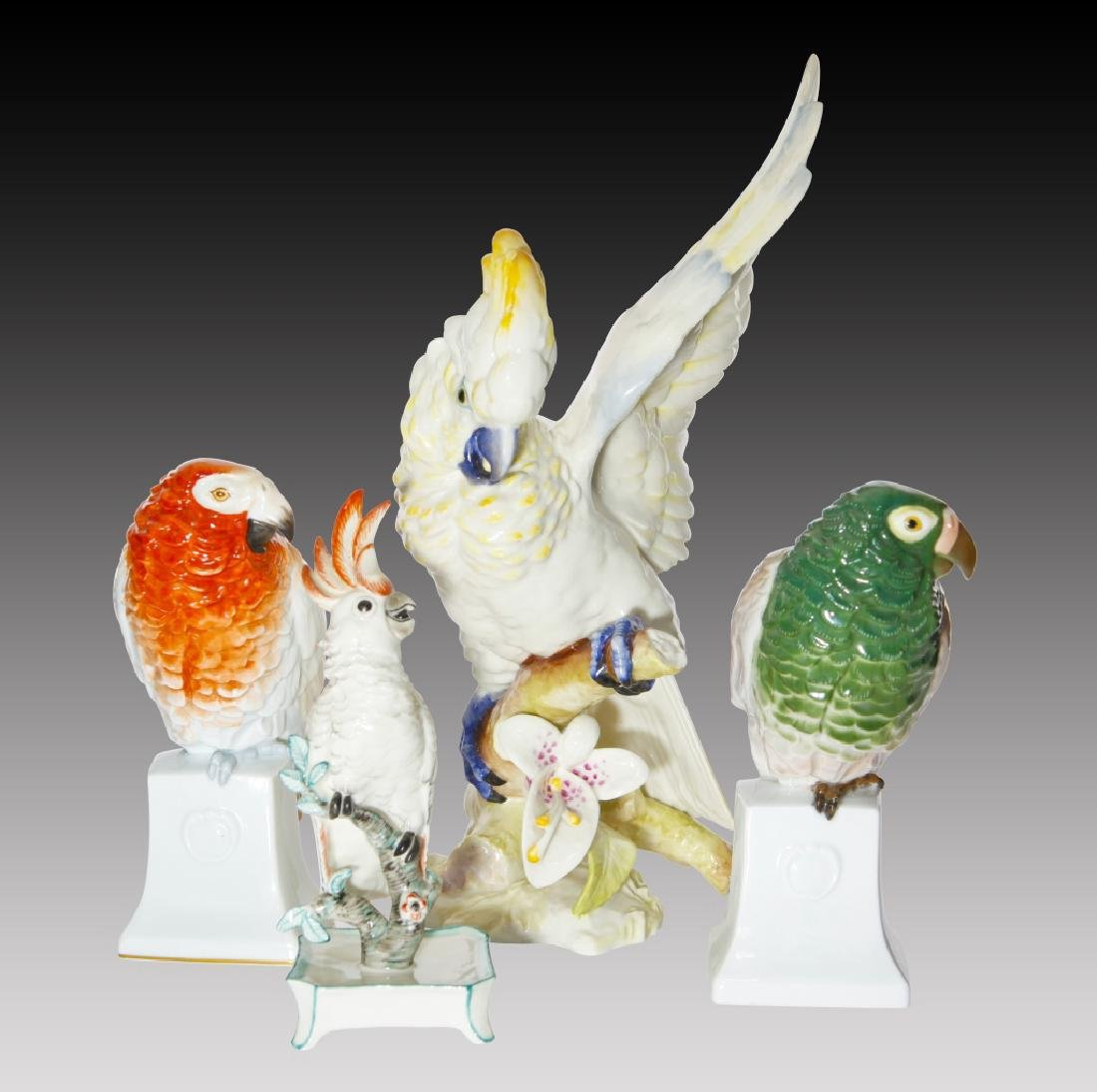 Grouping of 4 Colorful Parrots and Cockatoos