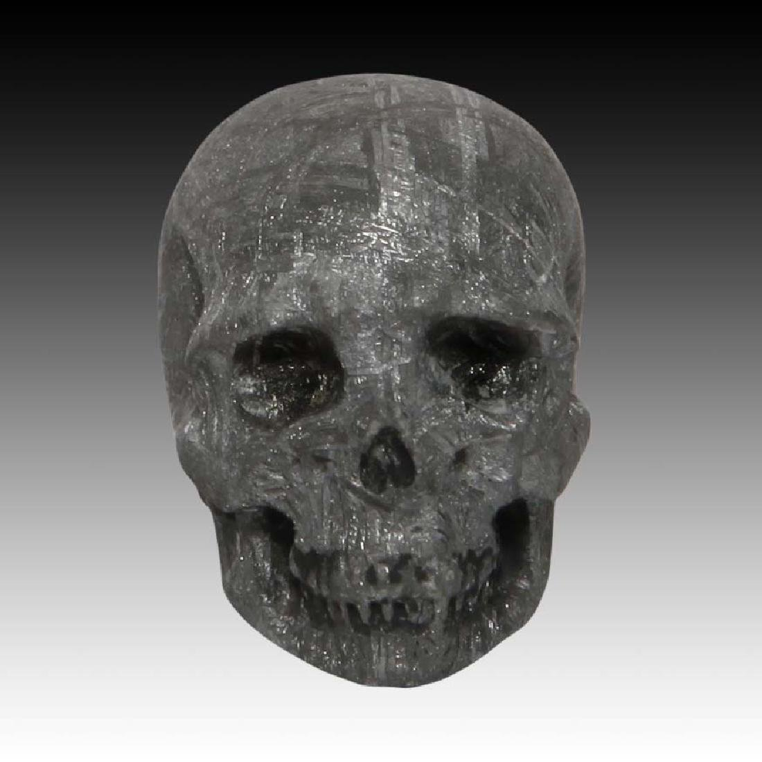 Gibeon Meteorite Skull by Lee Downey