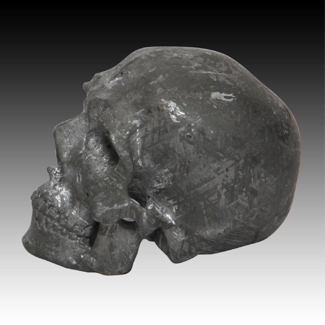 Gibeon Meteorite Skull by Lee Downey - 2