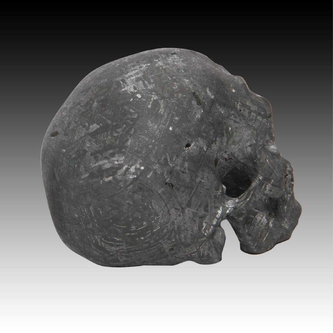 Gibeon Meteorite Skull by Lee Downey - 3