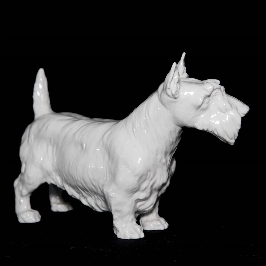 Meissen Blanc De Chine Porcelain Dog Figurine - 3